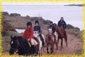 balades a cheval et poney au bord de l'etang