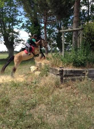 cce cross centre equestre ranch le petit sam