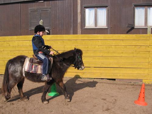 Cours d'equitation a poney pour les enfants a partir de 3 ans