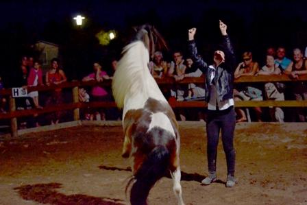 Elisa et pollux en spectacle equestre