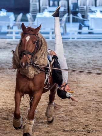spectacle equestre ranch le petit sam