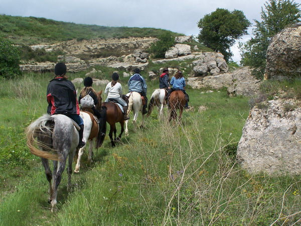 randonnées a cheval dans les collines de lespignan proche de beziers (herault 34)
