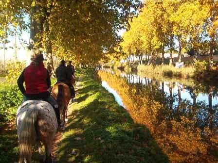 balade cheval canal du midi