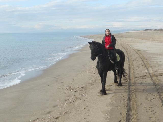promenade à cheval en bord de mer ( herault)