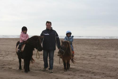 Promenades à poney en bord de mer mediterranee selon la periode.