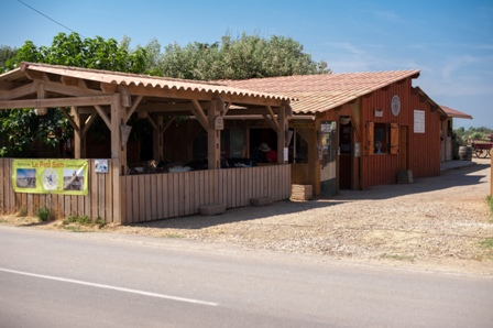 accueil ranch poney cheval ranch le petit sam
